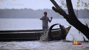 Swamp People - 03x03 Divide to Conquer