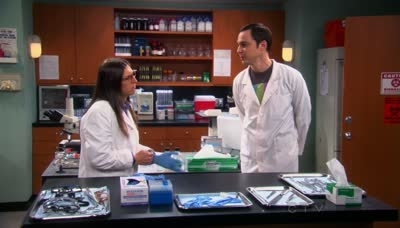The Big Bang Theory - 05x16 The Vacation Solution