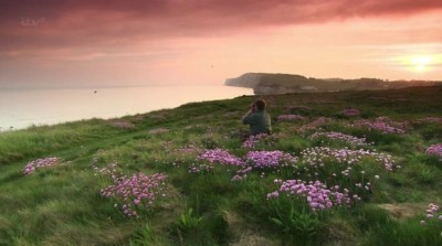 Wild Britain with Ray Mears (UK) - 03x10 The Best of Series 3 Screenshot