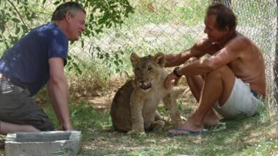 Martin Clunes and a Lion Called Mugie (UK) - 01x01 Episode 1 Screenshot