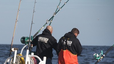Wicked Tuna - 03x08 Battle Royale