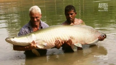 river monsters unhooked full episodes