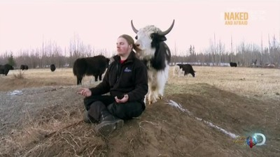 Alaskan Bush People - 01x05 The Wild LIfe