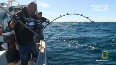 Wicked Tuna - 04x14 Knock Out Punch
