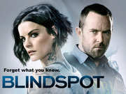 Blindspot tv show photo