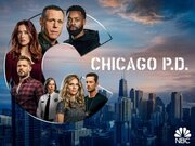 Chicago PD tv show photo