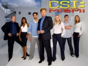 CSI: Miami TV Series