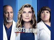 Grey's Anatomy TV Series