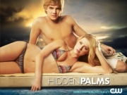 Hidden Palms TV Series