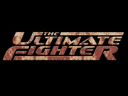 The Ultimate Fighter TV Series