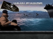 Whale Wars TV Series