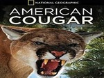 American Cougar: Revealed TV Show