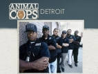 Animal Cops: Detroit tv show photo