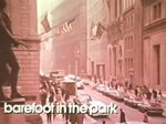 Barefoot In The Park TV Show