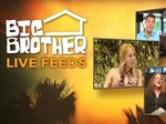 Big Brother: Live Feed (UK) TV Show