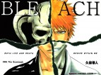 Bleach TV Show