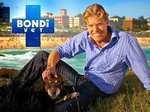 Bondi Vet (AU) tv show photo
