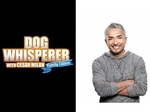 Dog Whisperer with Cesar Millan: Family Edition TV Show