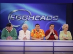Eggheads (UK) tv show photo