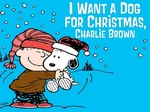 I Want a Dog for Christmas, Charlie Brown TV Show
