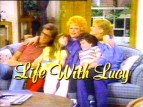 Life with Lucy TV Show