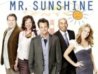 Mr. Sunshine (2010)