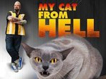 My Cat From Hell TV Show