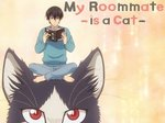 My Roommate is a Cat (JP) TV Show