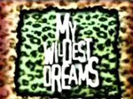 My Wildest Dreams TV Show