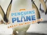 Penguins on a Plane: Great Animal Moves TV Show