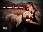 Pit Bulls and Parolees TV Show
