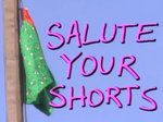 Salute Your Shorts TV Show