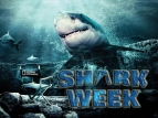 Shark Week tv show photo