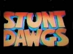 Stunt Dawgs TV Show