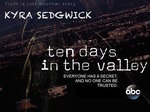 Ten Days in the Valley TV Show