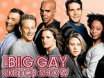 The Big Gay Sketch Show TV Show