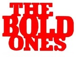 The Bold Ones: The Protectors tv show photo