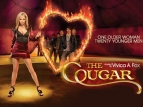 The Cougar TV Show