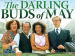 The Darling Buds of May (UK) TV Show