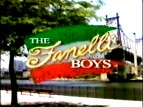 The Fanelli Boys TV Show