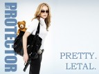 The Protector TV Show