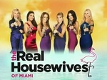 The Real Housewives of Miami TV Show