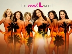 The Real L Word TV Show