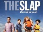 The Slap (AU) TV Show