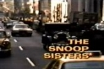 The Snoop Sisters TV Show
