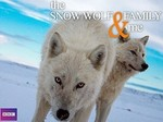 The Snow Wolf Family & Me (UK) TV Show