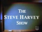 The Steve Harvey Show TV Show