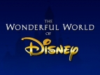 The Wonderful World of Disney TV Show