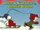 What a Nightmare, Charlie Brown! TV Show