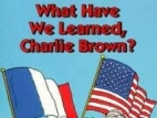 What Have We Learned, Charlie Brown? TV Show